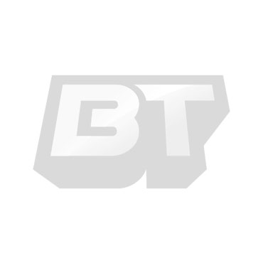Star Wars Scout Trooper Limited Edition Helmet From Efx